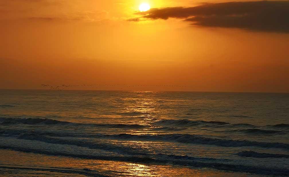 Hilton Head Island Tide Chart Heartpulsar
